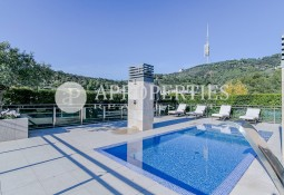 Spectacular penthouse for rent with private pool in Torre Vilana