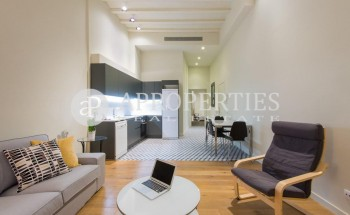 Fantastic brand new furnished apartment for rent in el Gòtic