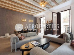 Luxury apartment for sale in el Born